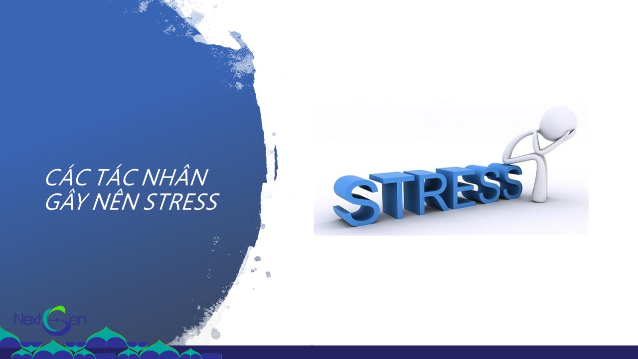 Stress là gì? Các tác nhân gây ra stress