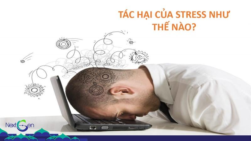 Tác hại của stress đối với cuộc sống như thế nào?