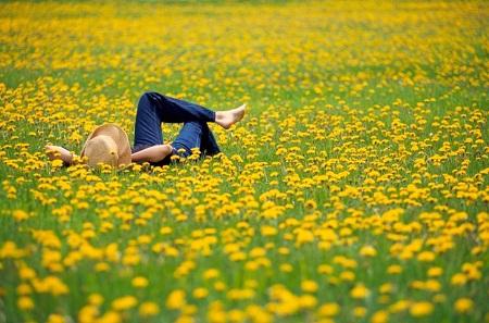 10 bí quyết để sống hạnh phúc – rất gần mà cũng rất xa